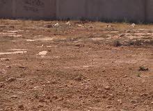 سيدي خليفة مخطط بنغازي الجديد بعد سوق بنغازي المركزي