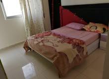 apartment for rent in AmmanShmaisani