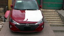 Hyundai Elantra in Giza for rent