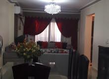شقة مفروشة فاخرة اكسترا بالمريوطية فيصل شارع الشيشني  فرش جديد