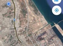 ارض زراعيه للبيع في لوى الزاهيه شرق مساحته 3000 م