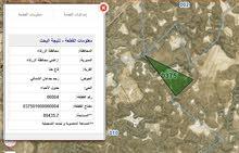 أرض مميزة للبيع 89 دونم في الزرقاء قاع خنا