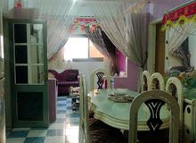 an apartment for sale in Mansoura Toreel Area