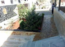 تنسيق حدائق زراعة بيع جميع انواع لأشجار زينة ومثمر داخلي وخارجي