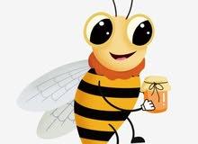 عندي جميع انواع العسل الجبلي وجميع الخلطات الخاصه