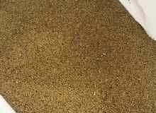بذر جت عماني مضمون100%
