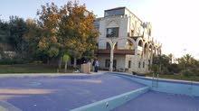 قصر في دابوق