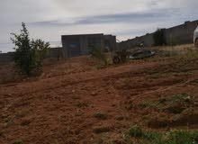 قطعه أرض مع منزل المساحه 2500 متر مربع