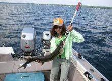 للبيع حامل و ميزان للأسماك ماركة Rapala
