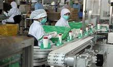 بنوفر عمال للعمل في المصانع