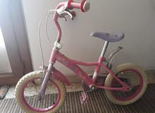 دراجة امريكية