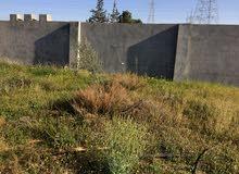 ارض 370 متر تاجوراء فتحة البيفي تكمل طول الفتحة الي مقابل جامع الرحمة عاليسار مصورة وبها بئر ماء