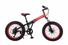 20 inch foldable fhat bike