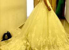 Brand new wedding dress + a lace veil