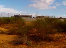 ارض للبيع في وادي الربيع النعم