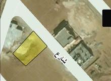 ارض 523 م للبيع في الطنيب مقابل جامعة الإسراء مباشره