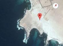 أرض ركنية مطلة على شاطئ مرباط مربع د ركنية