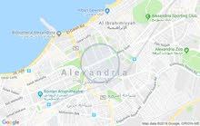 شقق للبيع ابوسليمان المساحه 155م