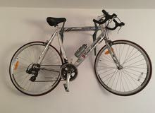 Racing bicycle lamborghini classica RARE