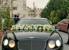 Gasoline Bentley Continental GT 2013