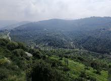 Land for Sale Bejjeh Jbeil Area 1741Sqm