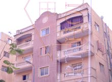 Own your apartment now in TIBA GARDENS in 6th October