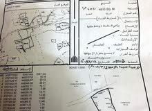 مزرعه للبيع فى سور العبري مساحتها 4510متر