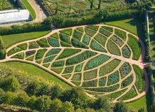 شركة ايمن فرج الزراعيه تنسيق و زراعة الحدائق و جميع انواع الأشجار