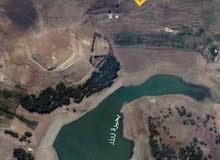 بحيرة زرزر