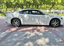 White Dodge Charger 2015 for sale