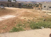 للبيع قطعه ارض 250متر في ابو نصير القرية