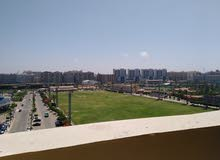 apartment located in Alexandria for rent - Smoha
