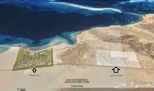 للبيع ارض تجارية في املج 631م  ب110 ألف