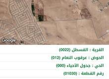 ارض للبيع عللا طريق المطار في منطقه القسطل 22000 الالف دينار