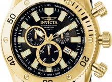 invicta sea spider watch