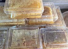 قرص كامل كيلو ونص 75 نص كيلو 25 للحجز العنوان ورقم تلفون مركز علي العلي للعسل