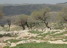 ارض مميزة للبيع في شمال عمان (شفا بدران) , مساحة الارض 750م