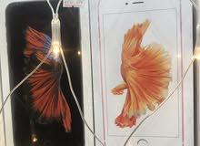 عرض قوي حتي نفاذ الكميه ايفون 6sبلاس 64 جيجا جديد