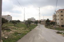 أرض سكنية خلف جامعة الزيتونة من المالك مباشرة