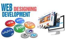 Professional Web Design & Development Service in Dubai
