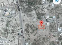 للبيع ارض زراعيه صحار كروان 1368 متر موقع ممتاز للسكن