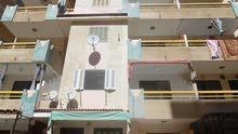 شقة طابق اول علوي مسجلة في النخيل بجوار البحر والخدمات