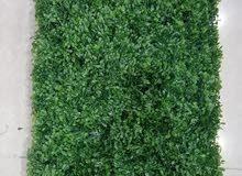 اقوى خصم العشب الجداري