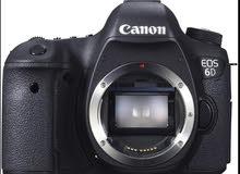 يعطيكوا العافيه مطلوب حدا يامني بكاميرا بالاردن باخد كميات