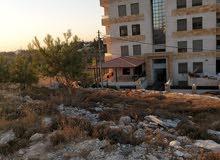 ارض في مرج الحمام خلف برشلونة  سكن أ على شارعين  بمساحة دونم من المالك مباشرة