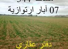 أرض فلاحية 344 هكتار ببلدية بنهار ولاية الجلفة