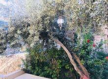 Hay Ma'soom neighborhood Zarqa city - 140 sqm apartment for sale