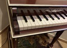عربيه الملكه بشكل بيانو