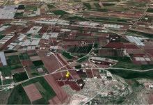 قطعة ارض مميزه في مزرعة السامك حوض 5 العباس