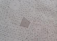 ارض سكنيه للبيع في مدينه ماحص حي الميدان الجنوبي
